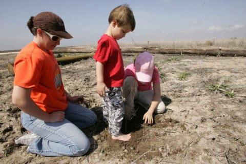 A stock image of a young boy helps his sister and mother plant trees