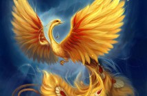 The Rebirth of the Phoenix