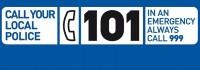101 Logo