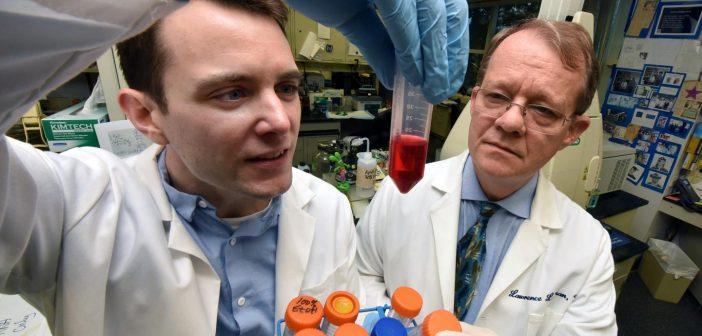 Gene variants provide insight into brain, body incongruence in transgender